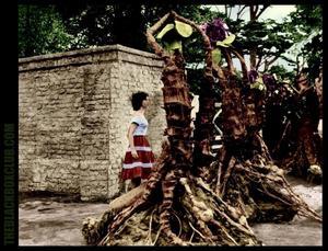 Carole Ann Ford möter triffider i filmen