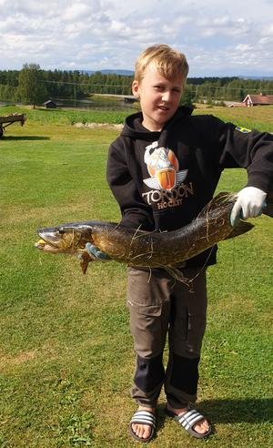 Melker Jönsson-Ideborg , 9 år, drog en gädda på 3 kilo i Vallsjön. Foto:Privat