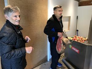 """Det är första gången Bodil och Bengt Abrahamsson från Västerbykil, Västerfärnebo, mustar äpplen, och de har tagit med sig tio papperskassar. """"Det är inte bara våra, utan även grannens och barnens frukt"""", säger Bengt när han laddat vattenbadet."""