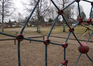 Säkrare leksaker är ett av målen. Ett annat är att parkens olika delar – bland annat fotbollsplan och gräsmatta – ska hänga ihop bättre än idag.