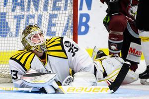 Tomi Karhunen har spelat tolv matcher i höst och har en räddningsprocent på 91,60 i Brynäs. Akrivbild: Bildbyrån