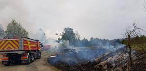 Bränder nära hjorthägn i Resele.