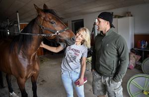 Vinnarhästen Quantum Tic Tac, kusken Lotta Thörnberg och hästskötaren Martin Thörnberg i stallet. OBS: Bilden är tagen vid ett tidigare tillfälle.