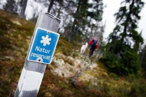 Sonfjället firar 100 år som nationalpark.