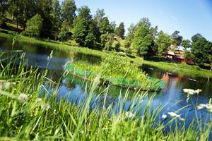 2015 placerade Hedemora kommun kornhalmskassetter och konstgjorda öar för att förbättra sjöns kvalitet. Nu har det gett resultat. Siktdjupet sträcker sig ner mot fyra meter - en siffra man tidigare inte haft så här års.