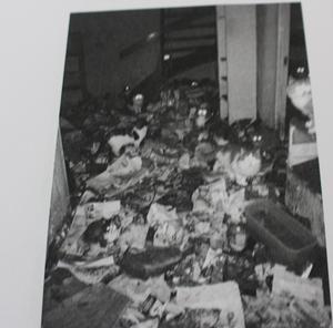 Huset stank, enligt länsstyrelsens tillsyn, av ammoniak och mitt i röran levde 54 katter. Bland skräpet hittades även en död katt. Foto: Länsstyrelsen