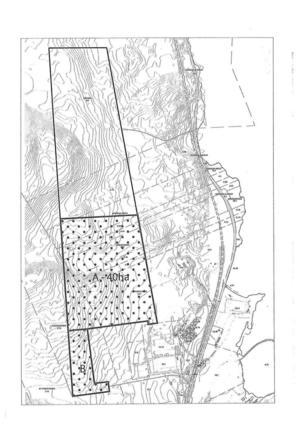 Det 40 hektar stora område som kommer att avverkas under första halvåret 2019.