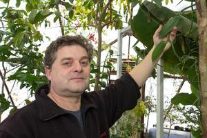 Vanilj kan också odlas i ett akvaponiskt odlingssystem, berättar Björn Oliviusson.