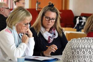 Elisabet Adolph och Karin Gunnarsdotter ingår båda i den grupp av ambassadör som ska mejsla fram stadgar och en fungerande förening som kan hantera de bygdemedel som vindparken i Haverö kommer ge.