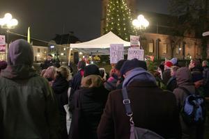 Efter manifestationer skriver 91 personer på ett öppet brev som ska vidare till FN:s klimatmöte i Polen.