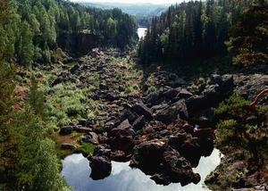 En torrlagd fåra är det som återstår av det mäktiga vattenfallet Storforsen.