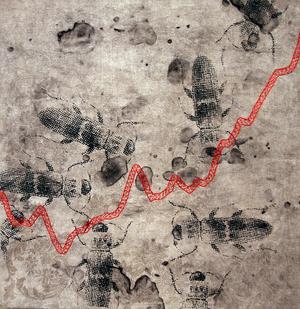 Maria Forsling Jenke återbrukar sin mormors vävda linnehanddukar i tavlor som visar koldioxidutsläppen i världen som en ständigt stigande broderat kurva.