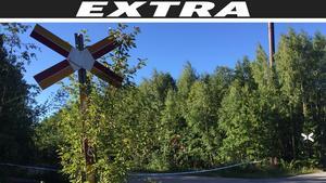 Platsen i Svartvik spärrades av under söndagskvällen. Polisen har inlett en förundersökning om mord .