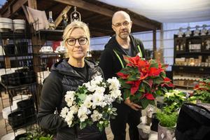 Madeleine Gerdsdorff, som sköter butiken, tillsammans med Markus Svensson inför julförsäljningen i den egna butiken.
