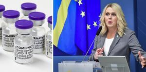 Lena Hallengren, socialminister, kallade till en pressträff under fredagen. Arkivbilder.