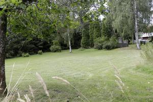 Djupt under gräset i sluttningen ned mot Borsån vilar många Vedevågsbor. Däribland 26 barn.