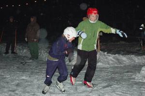 Bra fart. En del åkte fort andra gled mer över isen.