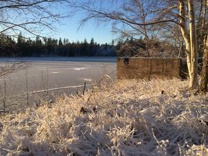 I den frostiga januarisolen är det svårt att tro att maken under snön hör till länets mest förorenade. Bara fundament påminner om att det en gång låg en stor industri vid sjön Multen i Rönneshytta.