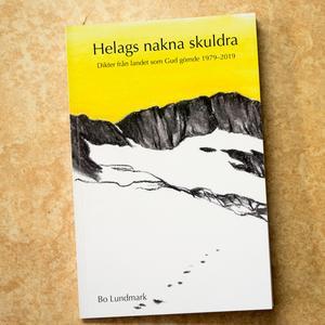 Konstnären Magdalena Brunzell har satt sin prägel på diktsamlingen med illustrationer av omslaget och inne i boken.