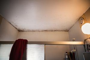 I badrummet hänger svartmöglet över duschen. Svartmögel kan leda till allergier, astmatiska besvär och i värsta fall cancer.