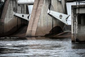 Kraftverksdammar innebär stora hinder för vandrande laxfiskar – nu planeras det bygge av flera vandringsvägar för att trygga bestånden.