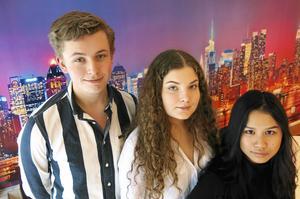 Theodor Vallanger, Lina Ljunggren och Hannah Bergqvist är tre fjärdedelar av UF-företaget Mood for Food. Mikael Palm är företagets fjärde medlem.