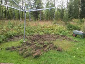 Vildsvinen bökade upp stora delar av Anssi och Lottas trädgård.