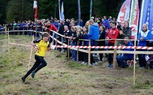 Stora Tunas Tove Alexandersson tog hem SM-guldet på långdistans i Göteborg på söndagen. Foto: Markus Josefsson