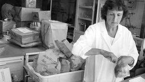 Clary Pousette vid livsmedelsverket mottar och registrerar mängder av köttprover från slakterier i strålningsdrabbade län.