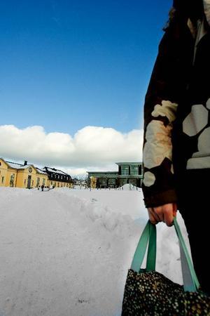 Mittuniversitetets tre lärosäten har antagit fler studenter till vårens kurser och program än de gjorde för ett år sedan. Foto: Ulrika Andersson