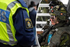 Skribenterna menar att polisen skulle avlastas genom ett samarbete med försvarsmakten.