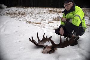 Edon Östlund är en av flera personer som fick se vargen gnaga på jakttrofén. Vargen hade skabb och har troligen smittats av en räv den dödat eller ätit.