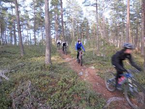 Bild från banan. Bild: Jörgen Flink.