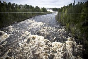 Det är fantastiskt att se över den breda dammen och de gröna träden när Laforsens kraftverk släpper ut vattenmassorna.