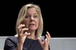 Finansminister Magdalena Andersson (S) tar i dag emot en utredning om de så kallade 3:12-reglerna.