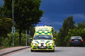 Det kan ha varit tjänstefel när en ambulans i somras transporterade katter från Kolsva till Strömsholms djursjukhus.