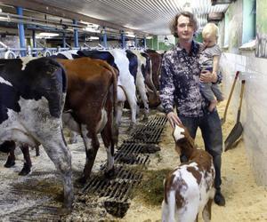 Wilhelm Nyman är tredje generation mjölkbonde på gården i Föne. Dottern Linnea, 1, har ett tufft yrkesliv framför sig om hon går i pappas fotspår.