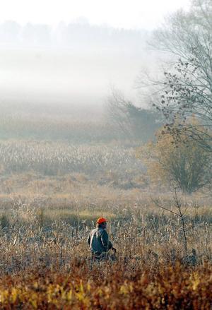 Enligt länsstyrelsens uppgifter aktiverade sammanlagt 1102 personer jakttillstånd på småviltjaktens första dag.