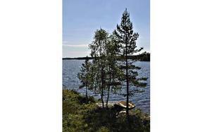 Yvonne Tongrings sommarhus vid sjön Gensen.