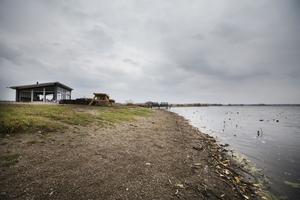 Hjälmarens vatten sjönk snabbt i somras, och sedan har det bara fortsatt sjunka. Som här vid Rävgången, i Rynningeviken.