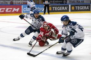 FINAL. Timrå IK besegrade Leksand i den allsvenska finalen.