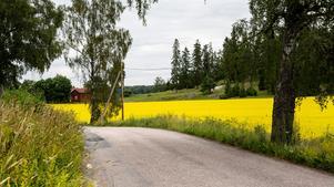 Svensk landsbygd.