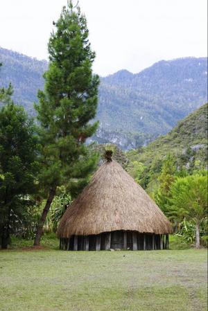 En traditionell hydda där en familj på uppåt 15 personer kan bo. Männen och kvinnorna bor i olika hyddor.
