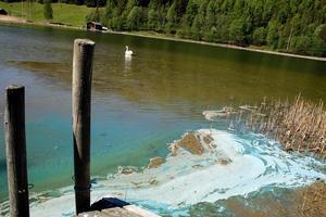 Algblomningarna kopplas ofta till övergödning av fosfor och kväve.