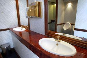 Speglar, mässingkranar som det kommer rinnande vatten ur, ädelträ, tvålpumpar, handtorkar och ljuv musik. En toalett värdig ett elegant hotell.