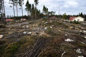 En del av Uvbergsviken är redan bebyggd. I förra veckan antogs en ny detaljplan för ytterligare bebyggelse i kommunfullmäktige i Borlänge, den här gången närmare badplatsen.