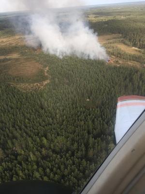 De här bilderna togs av brandflyget kring 17.30-18.30 under måndagskvällen.Foto: Sebastian Soltani