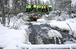 En kraftig stockbro har byggts för att skogsmaskinerna inte ska köra sönder bäcken.