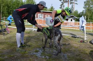 Lena Molin från Sollefteå Draghundklubb får hjälp av klubbkompisen Jörgen Peterson att svalka av sin hund efter sitt lopp.