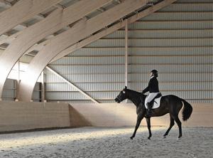 Åsa Söderqvist från Delsbo Kör- och ridsällskap visar vad hon kan med hästen Don Vincero (SWB)